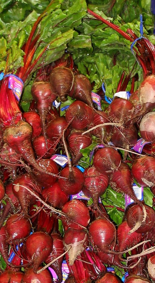 Red beets, probably the most common variety of cultivated beets.