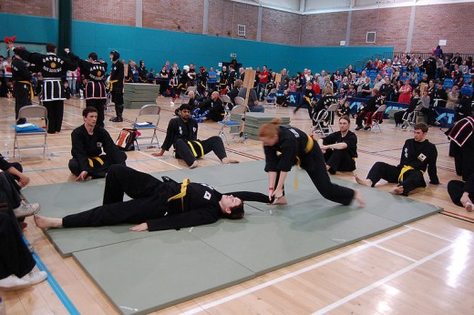 Kuk Sool Won students practicing joint locks.