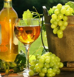 TOP WHITE WINE BRANDS