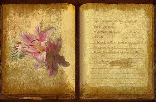 Flower Book Poetry KarmenRose flickr.com