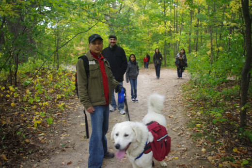 K2 leads us on the Bruce Trail near Hamilton.