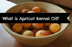 Apricot Kernel Oil Benefits, Uses, and Properties