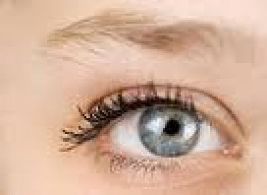The normal eye before limited myectomy surgery when eyelid muscles are removed and eyelid configuration changed.
