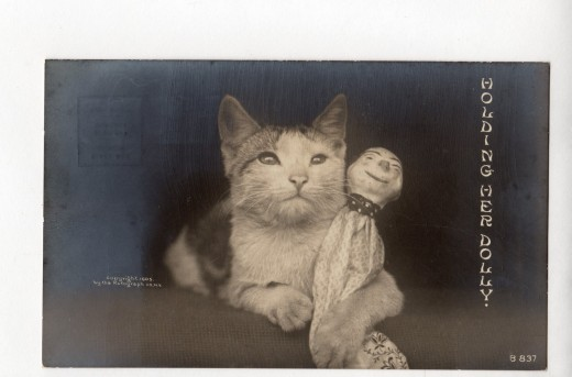 Cat Holding Doll, Real Photo Postcard, 1905, sold for $ 12.95