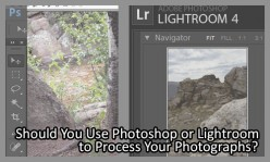 Should You Use Photoshop or Lightroom to Process Your Photographs?