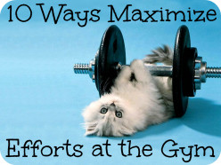 10 Ways to maximize your efforts at gym