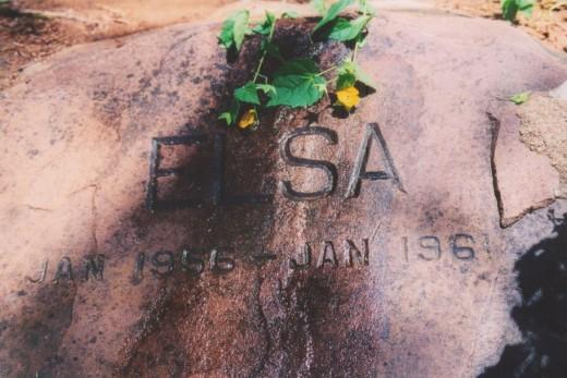 Elsa's Grave