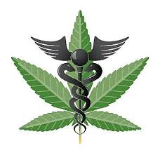 Using Cannabis for Medical Reasons Only Can Bring Positive Results in Numerous Health Conditions.