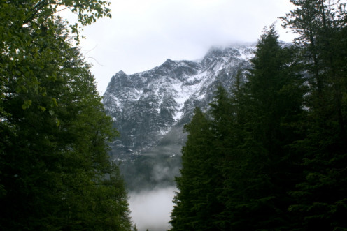 Mount Brown, Low Lying Clouds and Trees