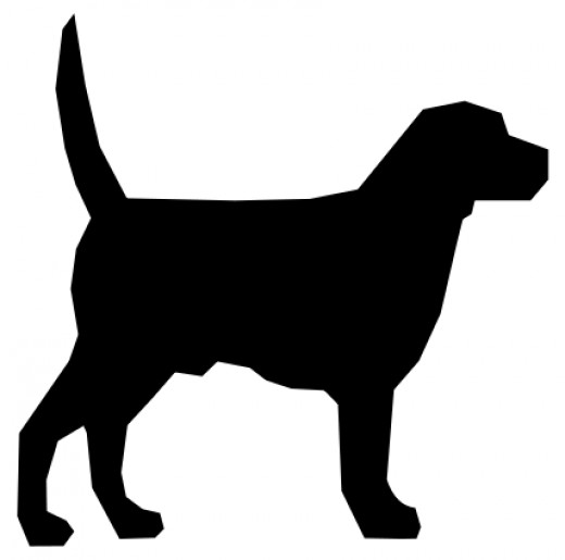 "A human infant at six months old can generally recognize this image as a ""dog"", even if they are pre-verbal."