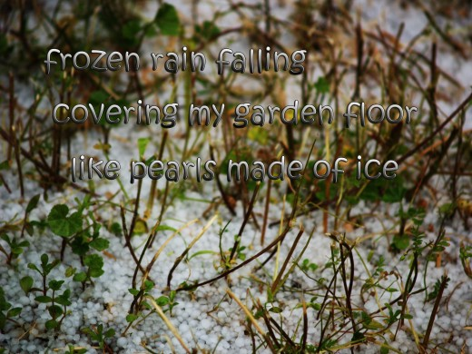 a freak hail storm in Southern California inspired Daisy Mariposa to write a haiku and crate this haiga
