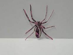 Smaller Spider