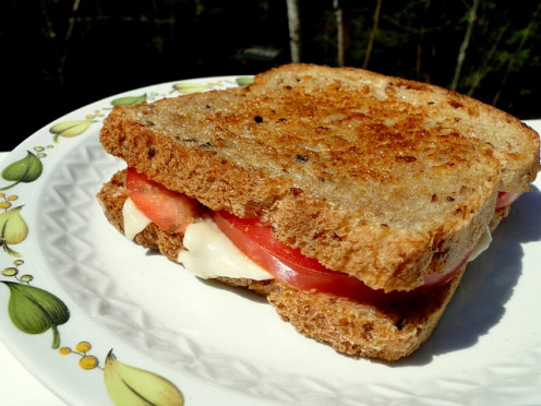 Grilled Cheese with Tomato. You can add a tomato slice to your grilled cheese sandwiches in the recipe below.