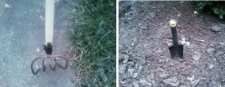 Keeping Weeds Out of Your Mulch Beds