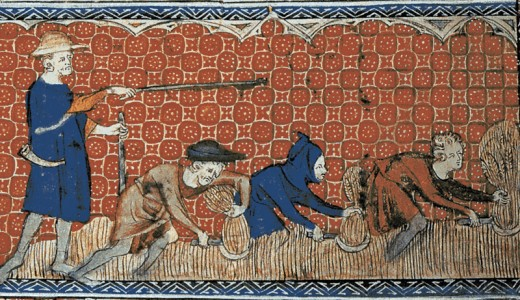 Illustration of medieval serfs harvesting wheat.