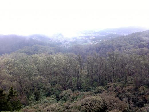 One of the views from Doddabetta peak