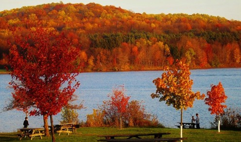 Pennsylvania State Forests - Gorgeous!