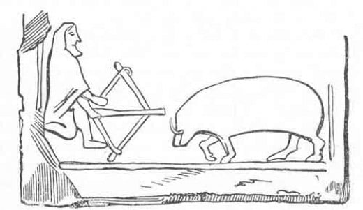 Beann Ghulban, the earless and tailless boar faces Diarmaid na Duibhne on the hunt (from a traditional carving)
