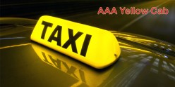 AAA Yellow   Cab - Taxi Driver