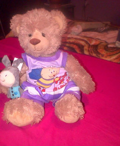 Meet Maxwell my Sweet Teddy and his Friends