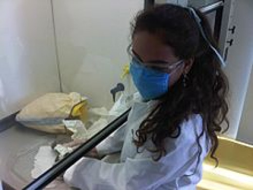 Medical Student at a lab at the Monterrey Institute of Technology and Higher Education in Mexico City