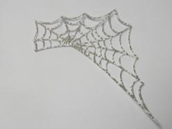 Sparkly Spider Web