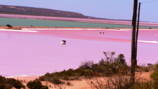 how to get to pink lake esperance