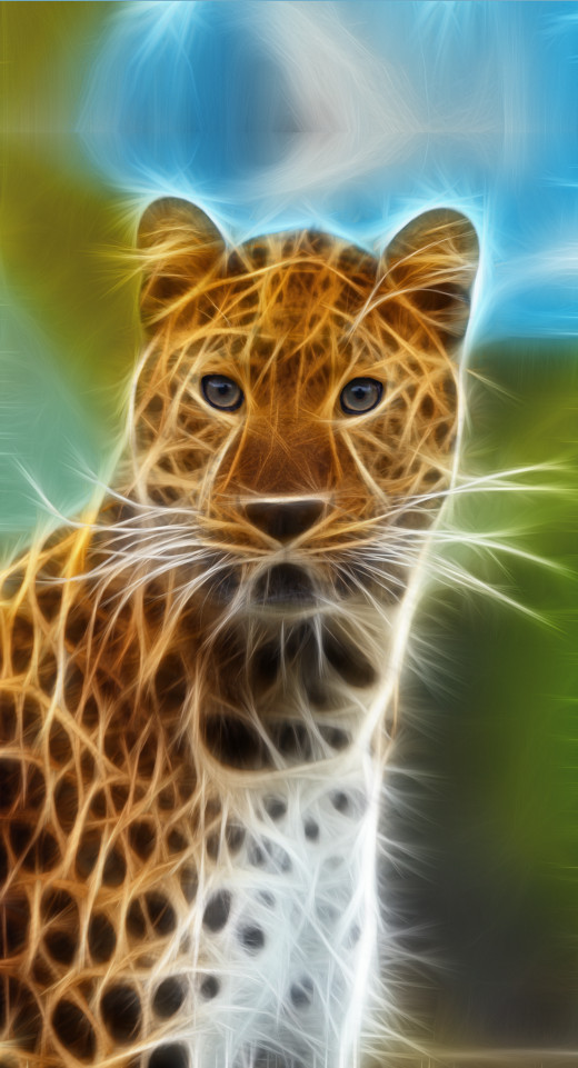 The fractalius effect on a leopard