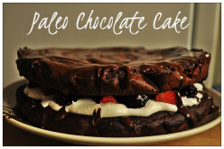 Super Healthy Paleo Chocolate Cake