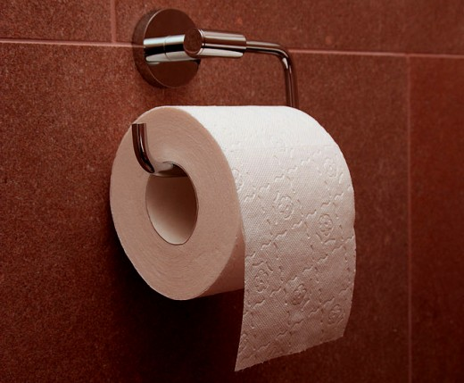 Correctly hung toilet paper.  Source: Wikimedia Commons.