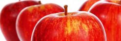Health Benefits of Apple Juice