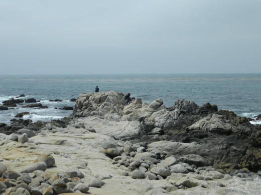 Pacific Grove July29, 2013