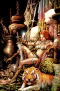 Red Sonja Costume History