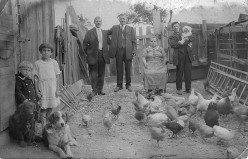 Successful northern families loved to inspect the trappings of their down-home relatives.