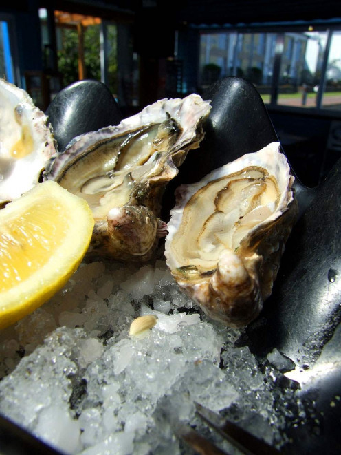 Once considered a food for the poor, oysters have come up in the world.