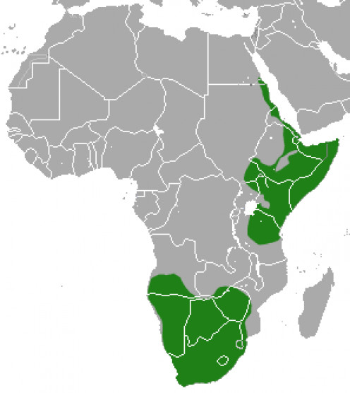 Aardwolf distribution, based on data from the IUCN Red List of Threatened Species, species assessors and the authors of the spatial data