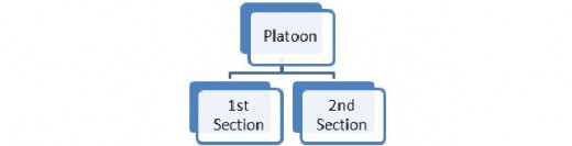 Figure 2: A Platoon subdivided into two Sections.