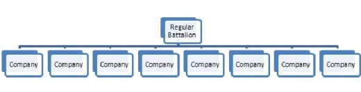 Figure 4: A New Regular Battalion, subdivided into eight Companies.