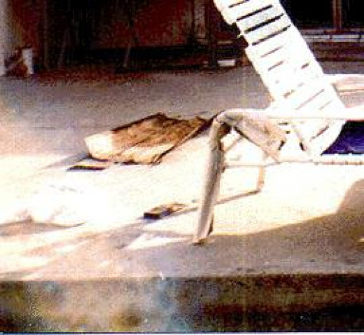 Look to the bottom left of photo in Gloria Wood's backyard in Beverly Hills, CA It's her ghost. The face is on it's side looking up as if tanning in the sun, you can see eyes, it's giving us a profile of itself. Wow.