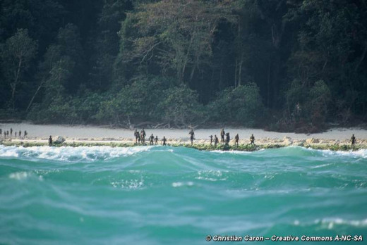Photographed from far away, the aggressive Sentinelese tribe