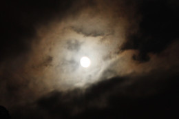 A Ghostly Night
