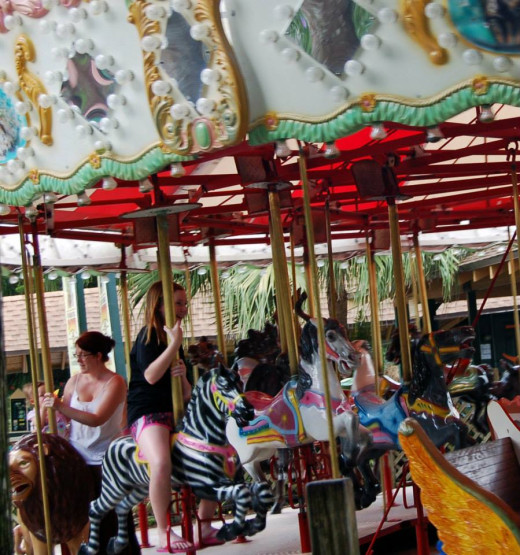 Carousel-photo by AMB