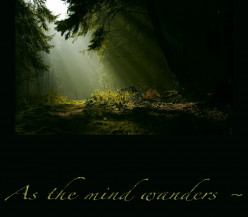 As The Mind Wanders