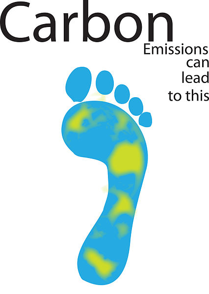One impact of the carbon footprint is on sea level rise and inundation of low lying nations