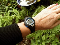 How To Use a Pedometer Watch