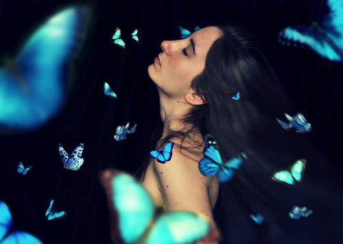 Ten million butterflies from Gemma Bou flickr.com