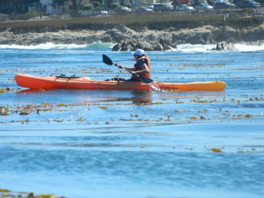 Tireless Sea Kayaking