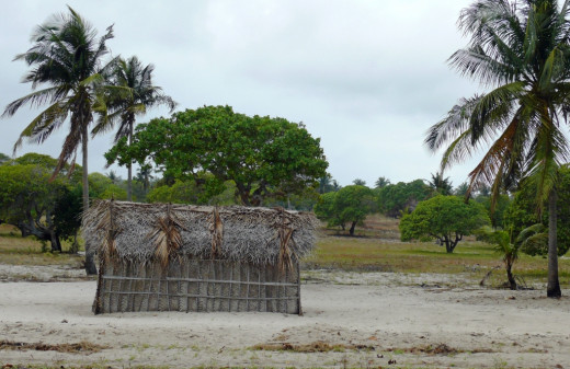 Mozambique homestead- Tofu