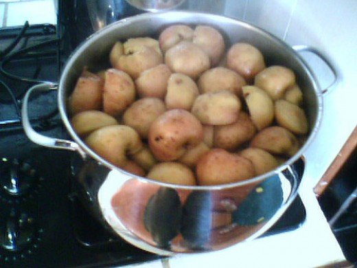 After I give them a thorough washing, I cook the apples before I make the apple sauce