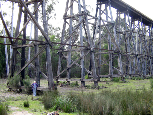 The Stony Creek Trestle Bridge near Nowa Nowa towers over a person